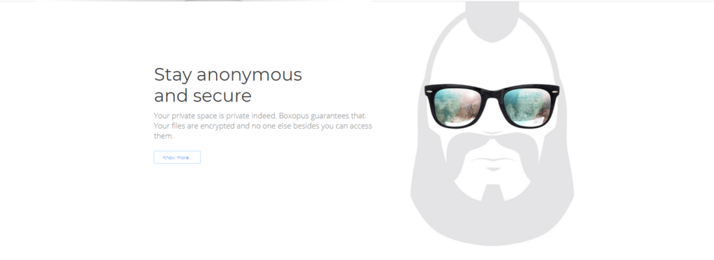 Boxopus and their view of security